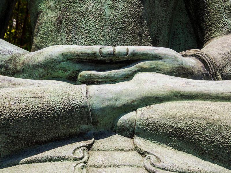 Buddha's-Hands_001