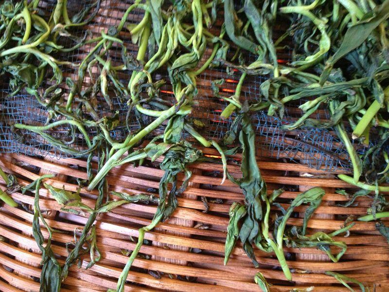 Tea Leaves01