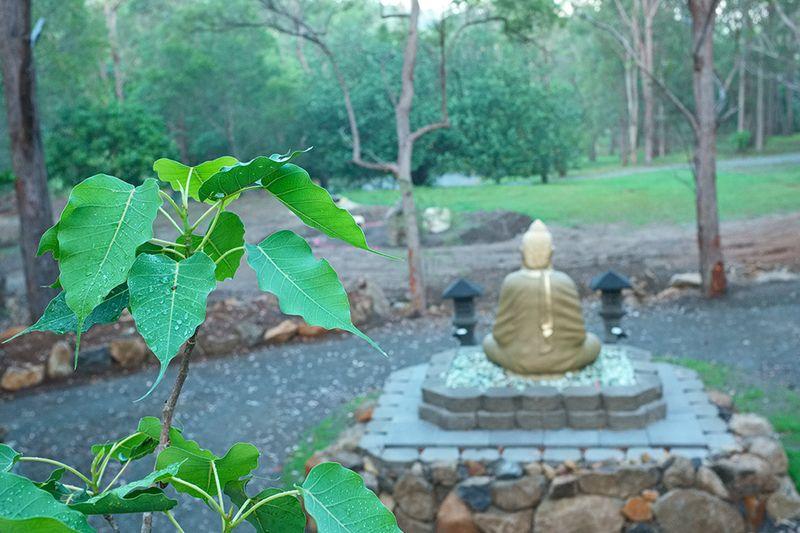 Buddha-in-the-Rain.02